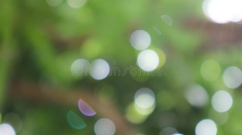 叶子和阳光Bokeh在绿色和黑背景 角钱 免版税库存图片