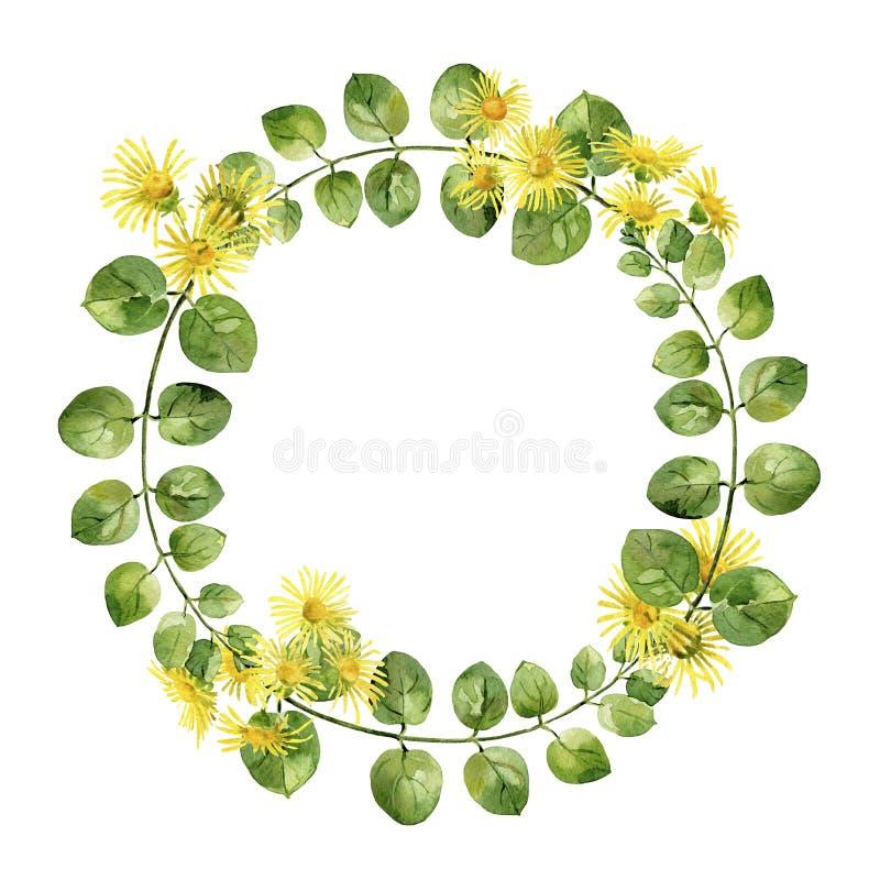 叶子和黄色花圆的框架  库存例证