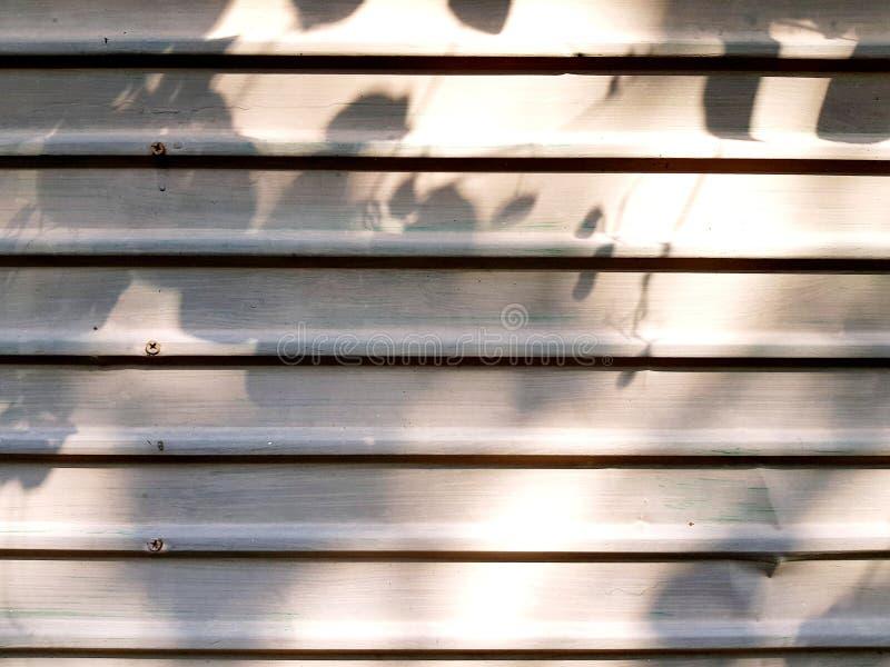 叶子和黄色阳光的阴影在白色钢背景或木门的早晨 库存照片