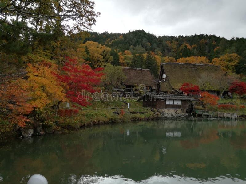 叶子在Hida民间村庄在高山市 图库摄影