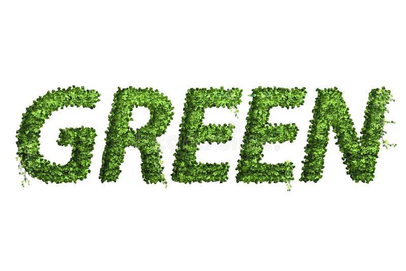 叶子字母表信件  叶子在白色bac隔绝的信件绿色 库存例证