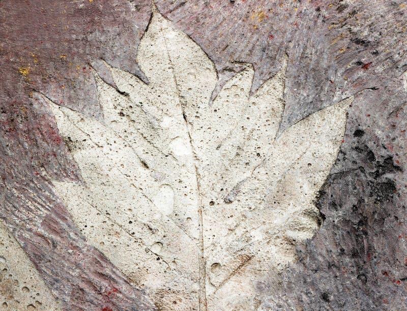叶子标记在混凝土路面的 免版税库存照片