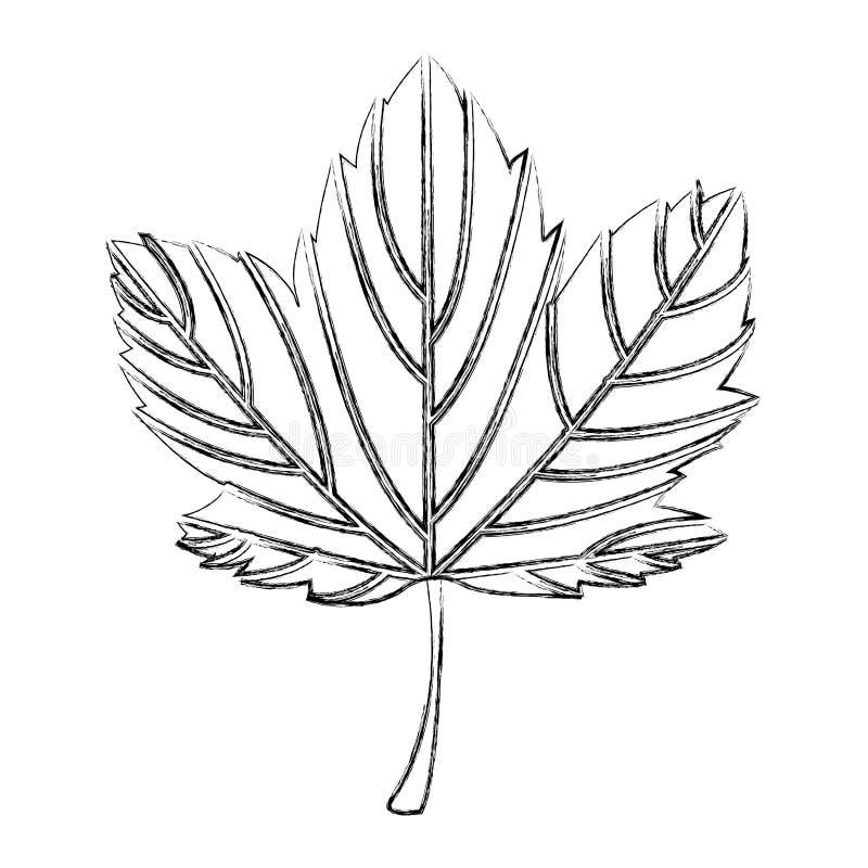 叶子植物季节性象 库存例证