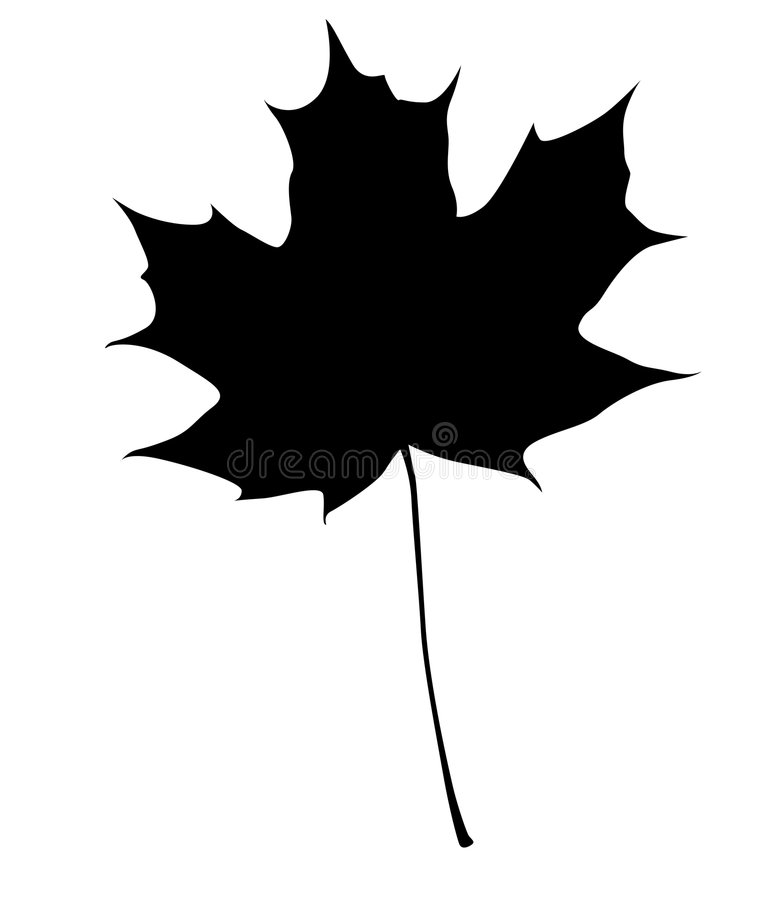 叶子槭树剪影 向量例证
