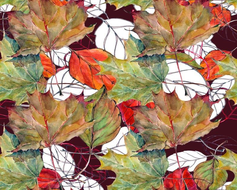 叶子槭树,樱桃,剪影,水彩,仿造无缝 库存例证