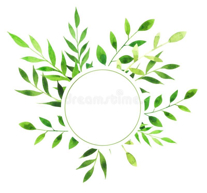叶子水彩圆的框架  库存图片