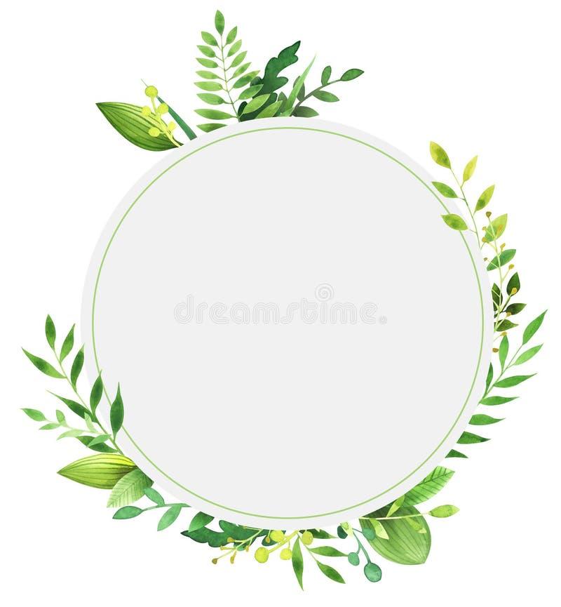 叶子水彩圆的框架  免版税图库摄影