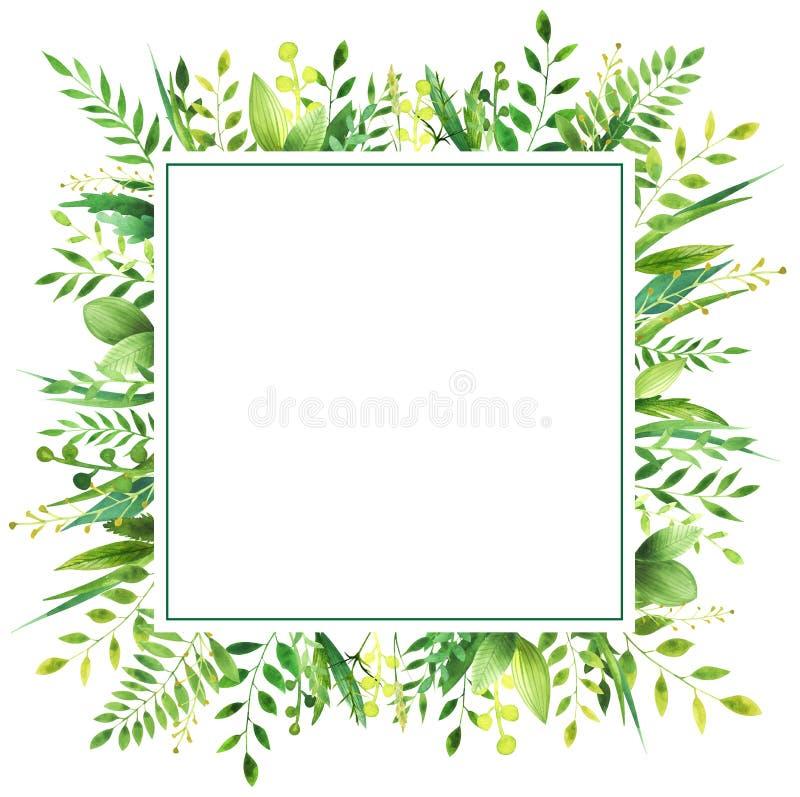 叶子水彩框架  免版税库存图片