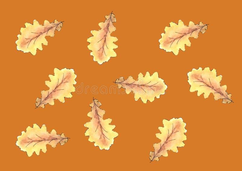 叶子水彩秋天橡木叶子样式植物 库存例证