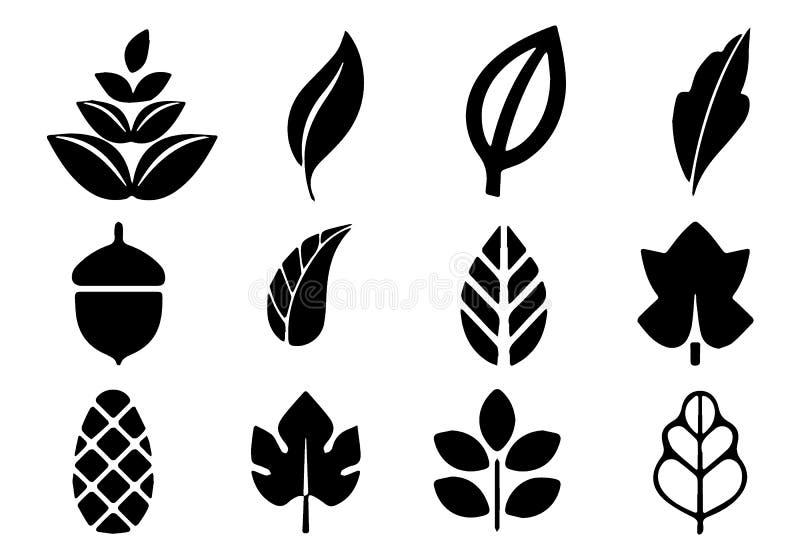 叶子的类型 秋天元素剪影  免版税库存图片