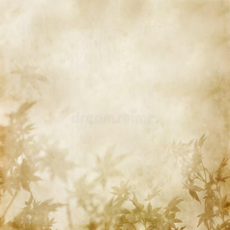 叶子纸张 免版税图库摄影