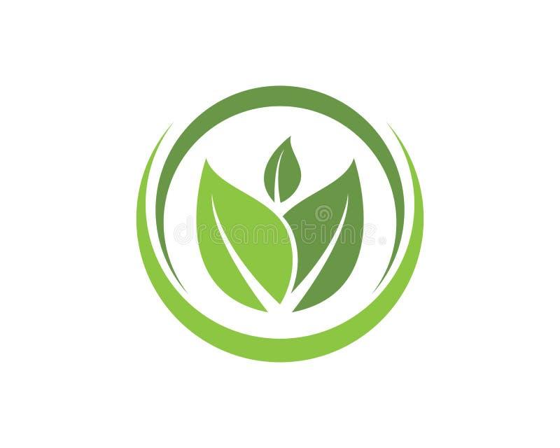 叶子绿色自然商标和标志模板传染媒介 皇族释放例证