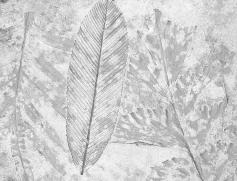 叶子背景标记  库存照片