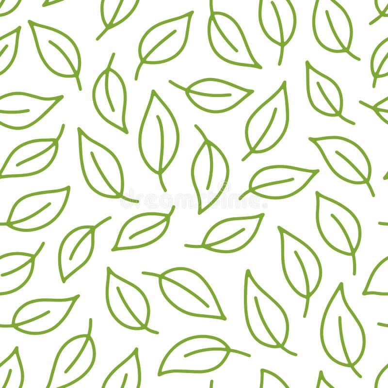 叶子背景 与叶子的绿色,白色无缝的样式在最小的线乱画样式 装饰重复包裹 向量例证