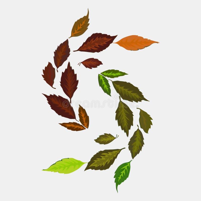 叶子装饰品的例证,枫叶植物的补花室内装饰的 向量例证