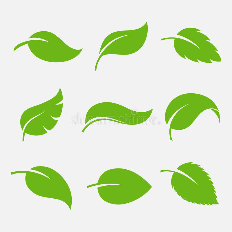 自然包括有装饰品,叶子,梦想,封面,剪影,结构树,新芽,形状关于要素大全的设计图片插画图片素材图片