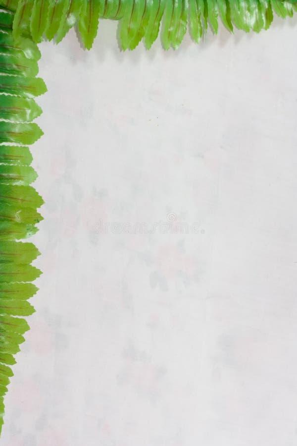 叶子边界背景 免版税库存图片