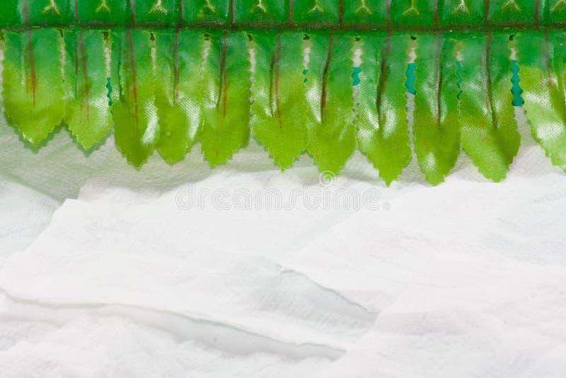 叶子边界背景 库存照片