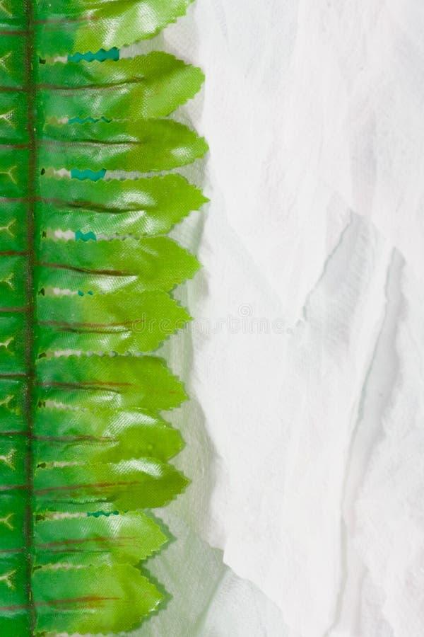 叶子边界背景 库存图片