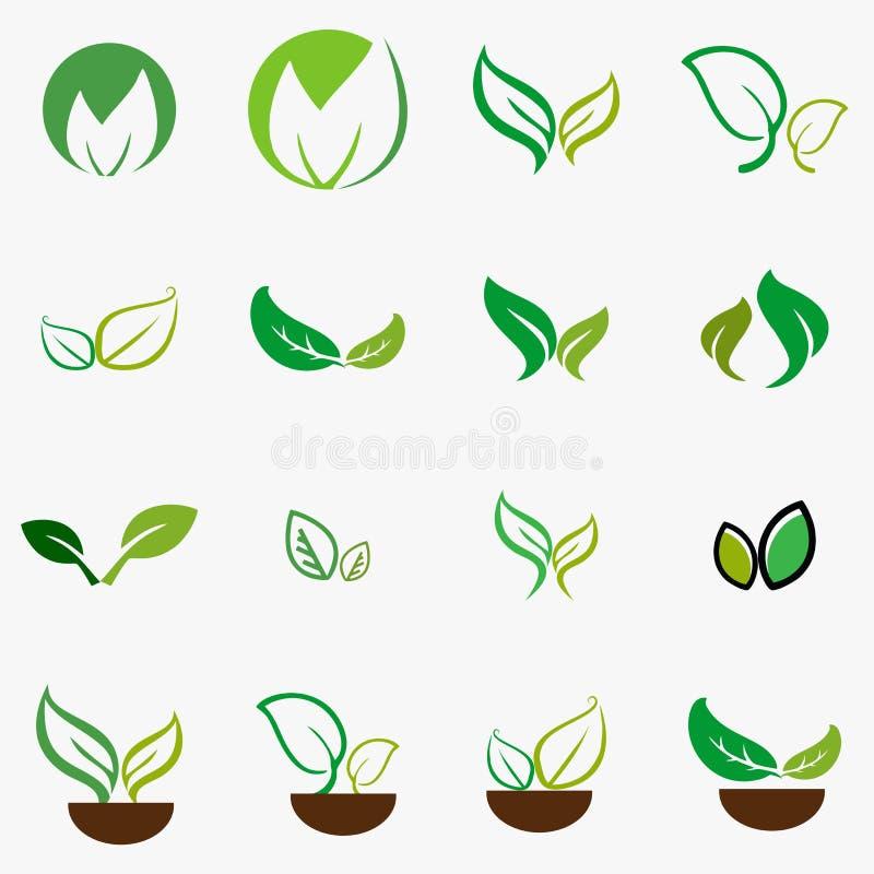 叶子,植物,商标,生态,人们,健康,绿色,叶子,自然标志设计象套  库存例证