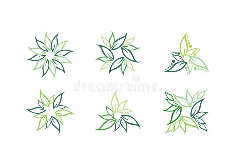 叶子,植物,商标,生态,绿色,叶子,自然标志传染媒介象套设计 皇族释放例证