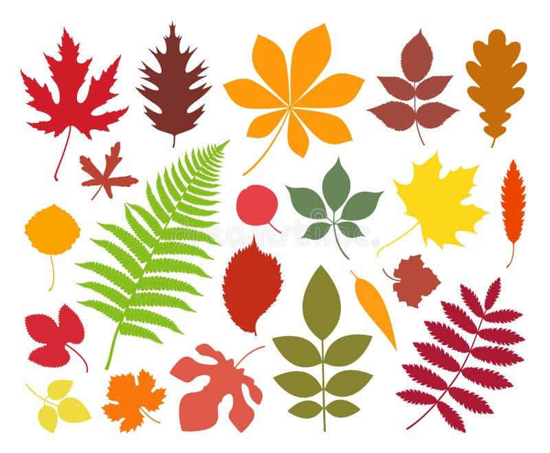 叶子 剪影 在白色背景的被隔绝的叶子 库存例证