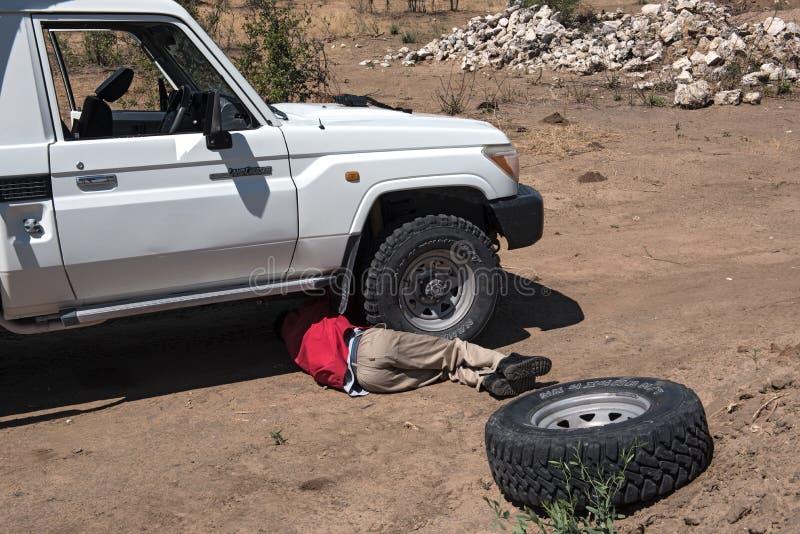 司机更换前面残破的轮胎 库存照片