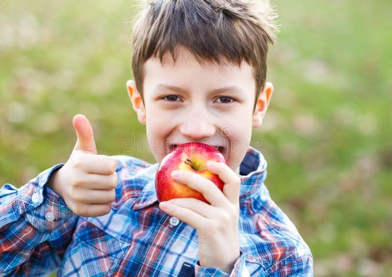 吃新鲜的红色苹果的愉快的小男孩室外 免版税库存照片