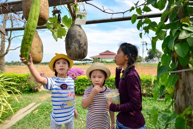 吃玉米花的愉快的亚洲孩子 库存照片