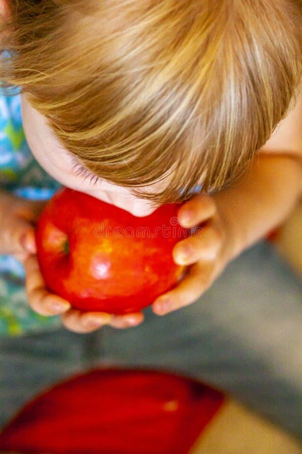 吃红色苹果的小女孩顶视图 库存照片