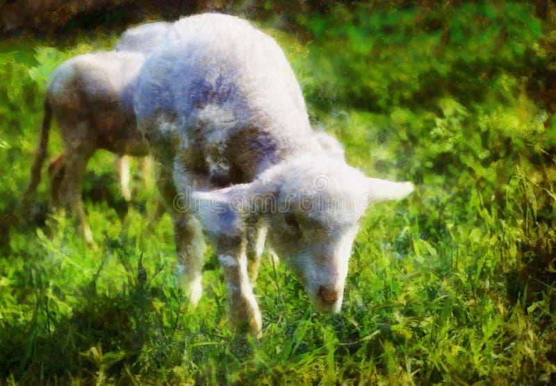 吃草在一个美丽的绿色草甸的小的羊羔用蒲公英 计算机绘画作用 免版税库存照片