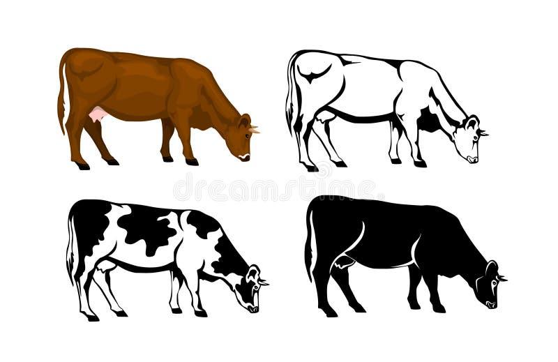 吃草在棕色颜色、剪影、等高和被修补的剪影的母牛 库存例证