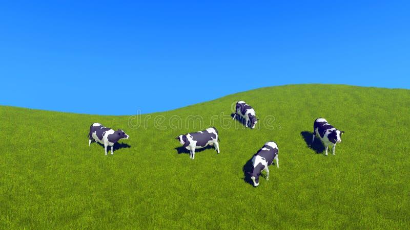 吃草在绿色牧场地顶视图的奶牛 向量例证