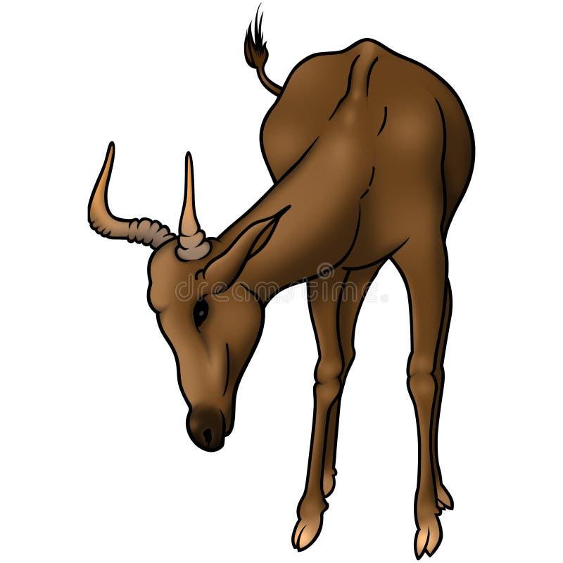 吃草的羚羊 库存例证