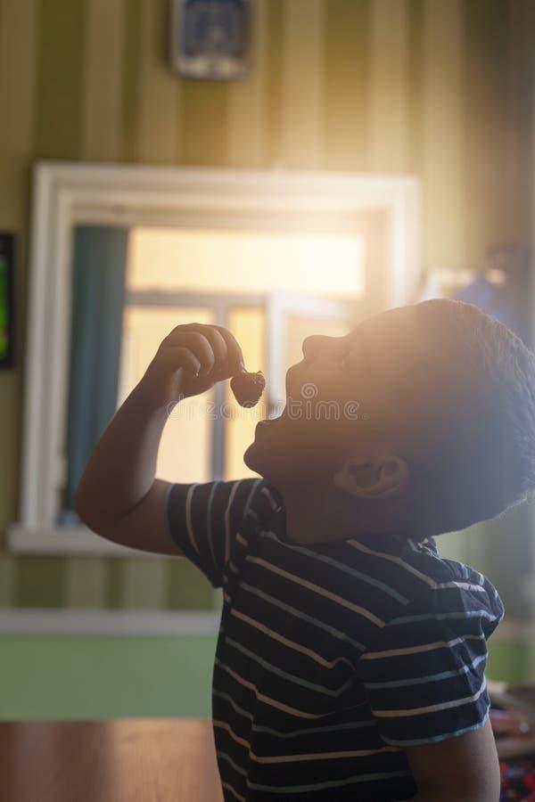 吃草莓的一个小男孩 E 免版税库存照片