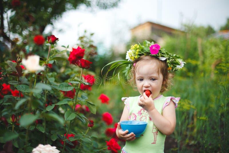 吃草莓的小女孩在有玫瑰的庭院里 免版税库存照片