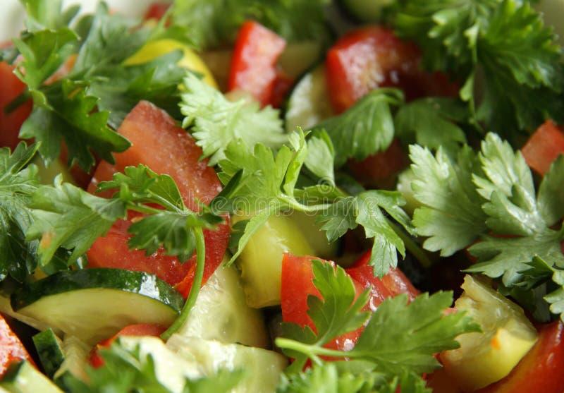 吃鲜美健康午餐的沙拉非常 免版税库存照片
