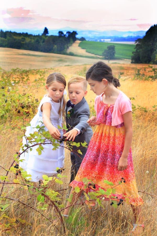吃黑莓的三个正式孩子 库存照片