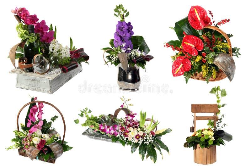各种各样的五颜六色的花的布置拼贴画  免版税图库摄影