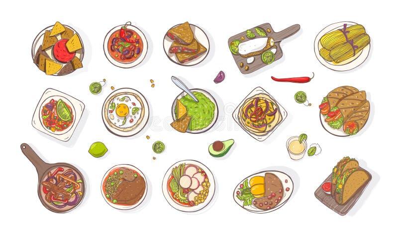 各种各样的传统墨西哥饭食的汇集-面卷饼,油炸玉米粉饼,炸玉米饼,烤干酪辣味玉米片,法加它,鳄梨调味酱捣碎的鳄梨酱 套国民 库存例证
