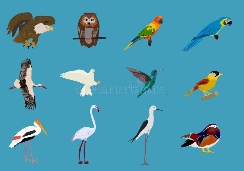 各种各样的套鸟蓝色背景,动物导航 皇族释放例证