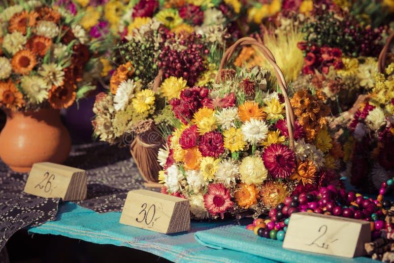 各种各样的干和色的植物和花家庭装饰的 库存图片