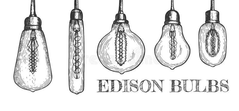 各种各样的形状的垂悬的爱迪生电灯泡的汇集 皇族释放例证