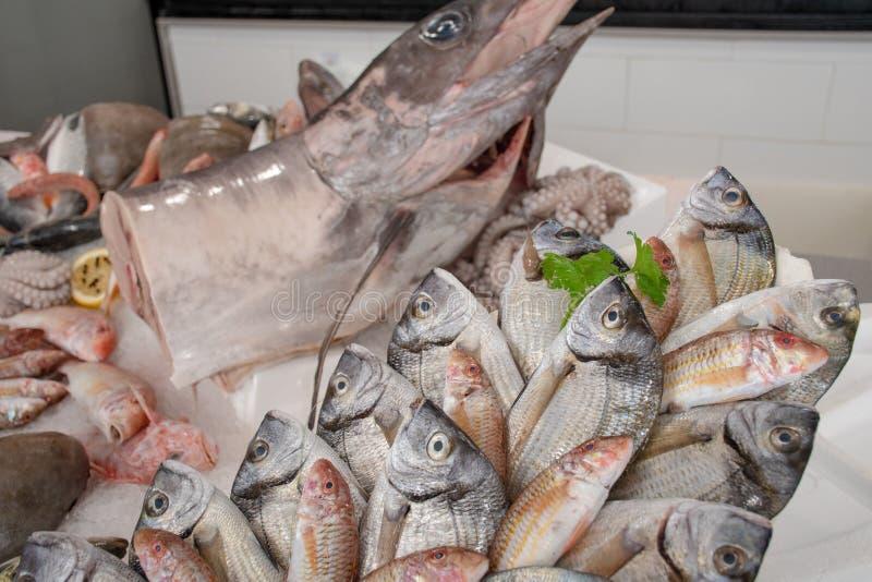 各种各样的新鲜的在桌上显示的海鲜和鱼待售在一个鱼市上在巴里,意大利 免版税库存图片