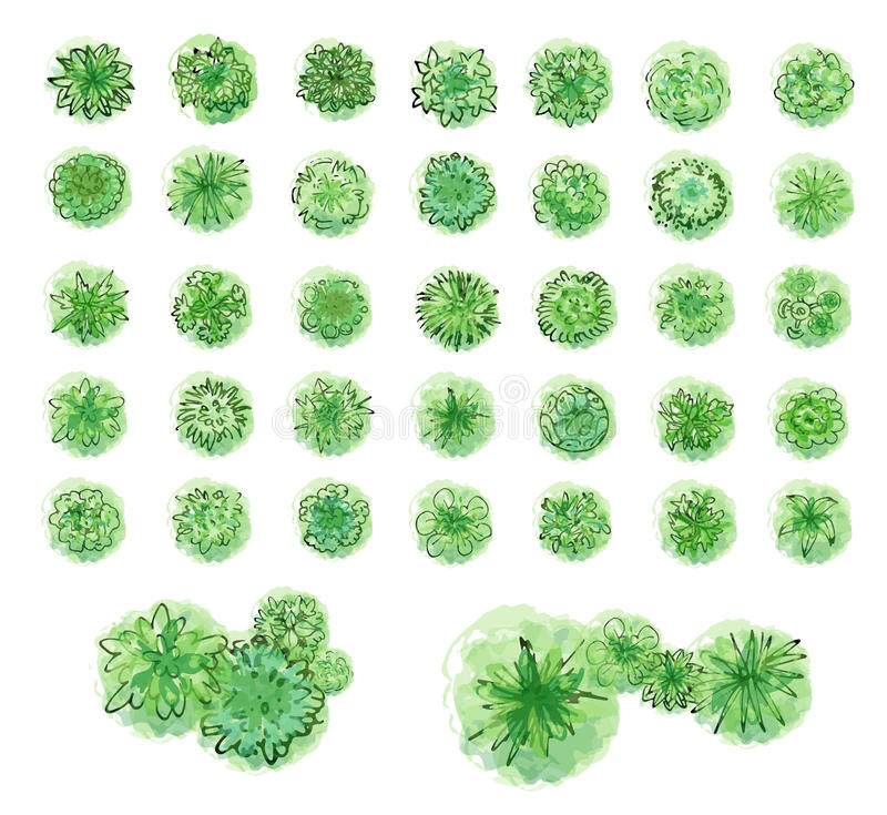 各种各样的树、灌木和灌木,风景设计规划的顶视图 传染媒介例证,隔绝在白色背景 向量例证