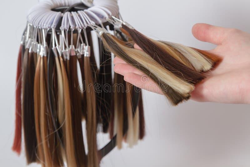 各种各样的树荫的色的头发样品调色板  图库摄影