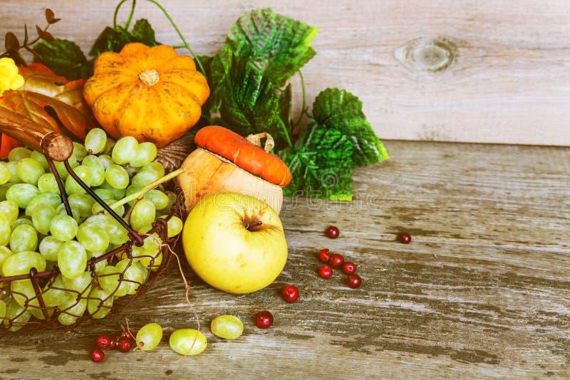各种各样的水果和蔬菜富有的收获  图库摄影