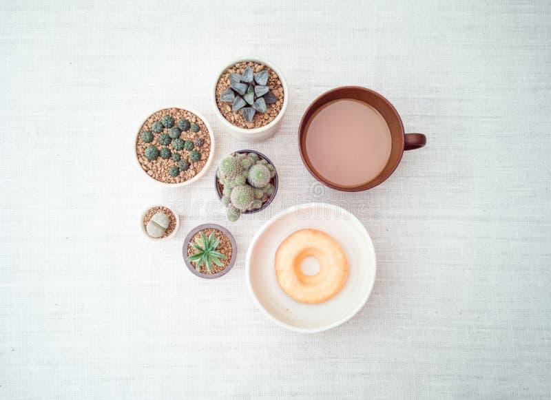 各种各样的盆的仙人掌房子植物的汇集,与一杯咖啡的多福饼,顶视图 免版税库存图片