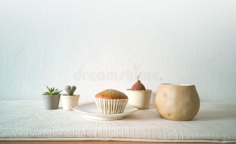 各种各样的盆的仙人掌房子植物的汇集,与一杯咖啡的杯形蛋糕-图象 免版税图库摄影