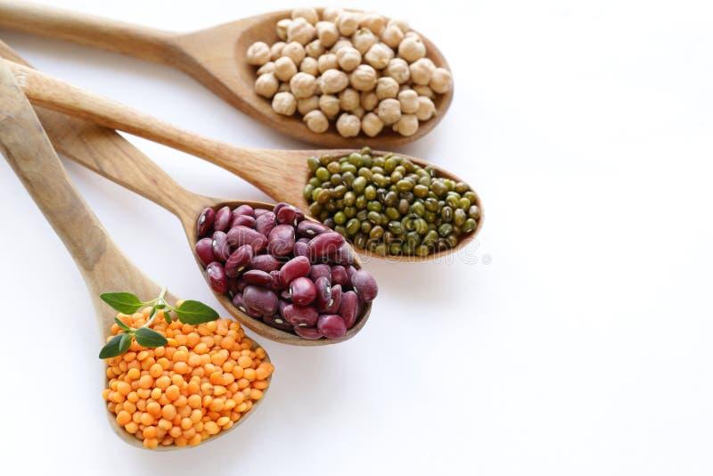 各种各样的种类豆类-豆,扁豆,鸡豆,蒙季 库存照片